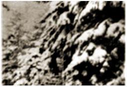 Photo de l'Almanach d'événement météo du 26/5/1983