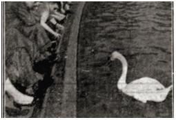 Photo de l'Almanach d'événement météo du 4/4/1959