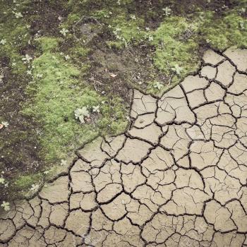 Le point sur la sécheresse en France en cette mi-Avril